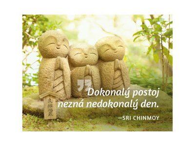 Dokonalý postoj nezná nedokonalý den - Sri Chinmoy