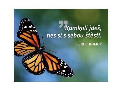 Kamkoli jdeš, nes si s sebou štěstí - Sri Chinmoy
