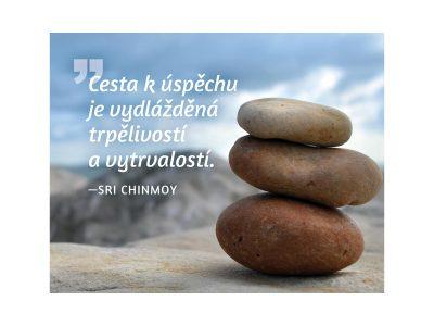 Cesta k úspěchu je vydlážděna trpělivostí a vytrvalostí - Sri Chinmoy