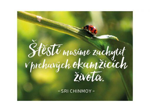 Štěstí musíme zachytit v prchavých okamžicích života - Sri Chinmoy