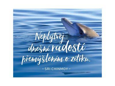 Neplýtvej dnešní radostí přemýšlením o zítřku - Sri Chinmoy