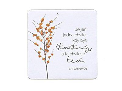 Je jen jedna chvíle být šťastný a ta chvíle je teď - Sri Chinmoy