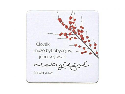 Člověk může být obyčejný, jeho sny však neobyčejné - Sri Chinmoy