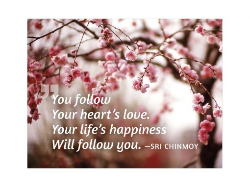 You follow your heart's love. Your life's happiness will follow you - (Sri Chinmoy)