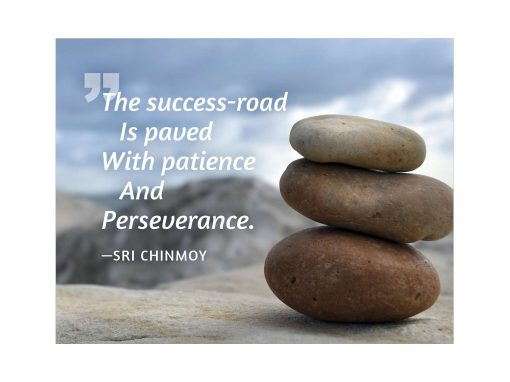 The success-road is paved with patience and perseverance - Sri Chinmoy