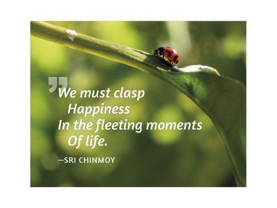We must clasp happiness in the fleeting moments of life - Sri Chinmoy
